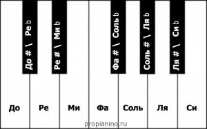 Расположение полутонов на клавишах пианино