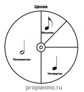 Длительности нот в виде окружности