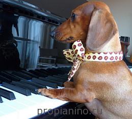 Обучение игре на пианино
