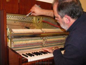 Скачать Бесплатно Программу Для Настройки Пианино - фото 7