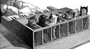 Кошачье пианино