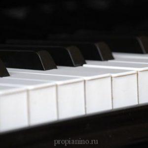 Рояль много клавиш имеет