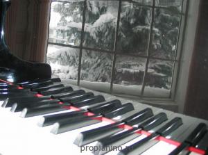 Стихотворение про фортепиано