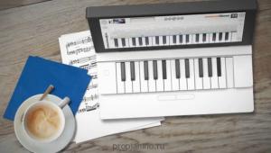 Пианино Miselu Neiro в кафе