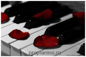 """Стихотворение """"Лепестки от цветов яркие"""""""