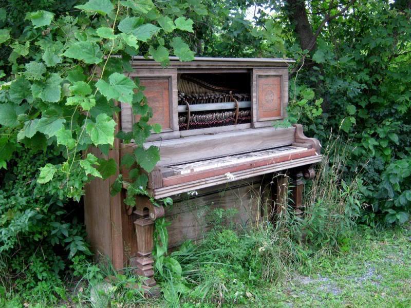 "Стихотворение ""На улице стояло пианино..."""