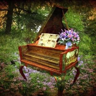 Купил в комиссионке клавесин