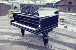 """Стихотворение """"Рояль на крыше"""""""