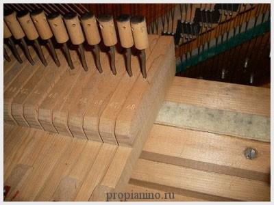 chistka_forte_piano