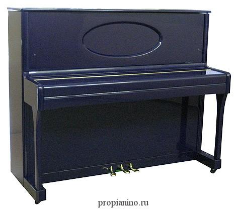 Richter-rondo синего цвета