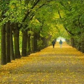 Ноты Autumn leavers (Косма)