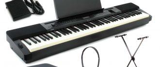 Особенности при выборе цифрового пианино для дома