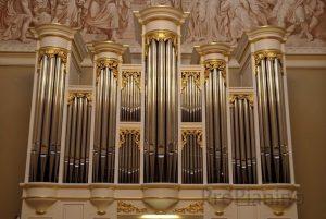 Изображение органа